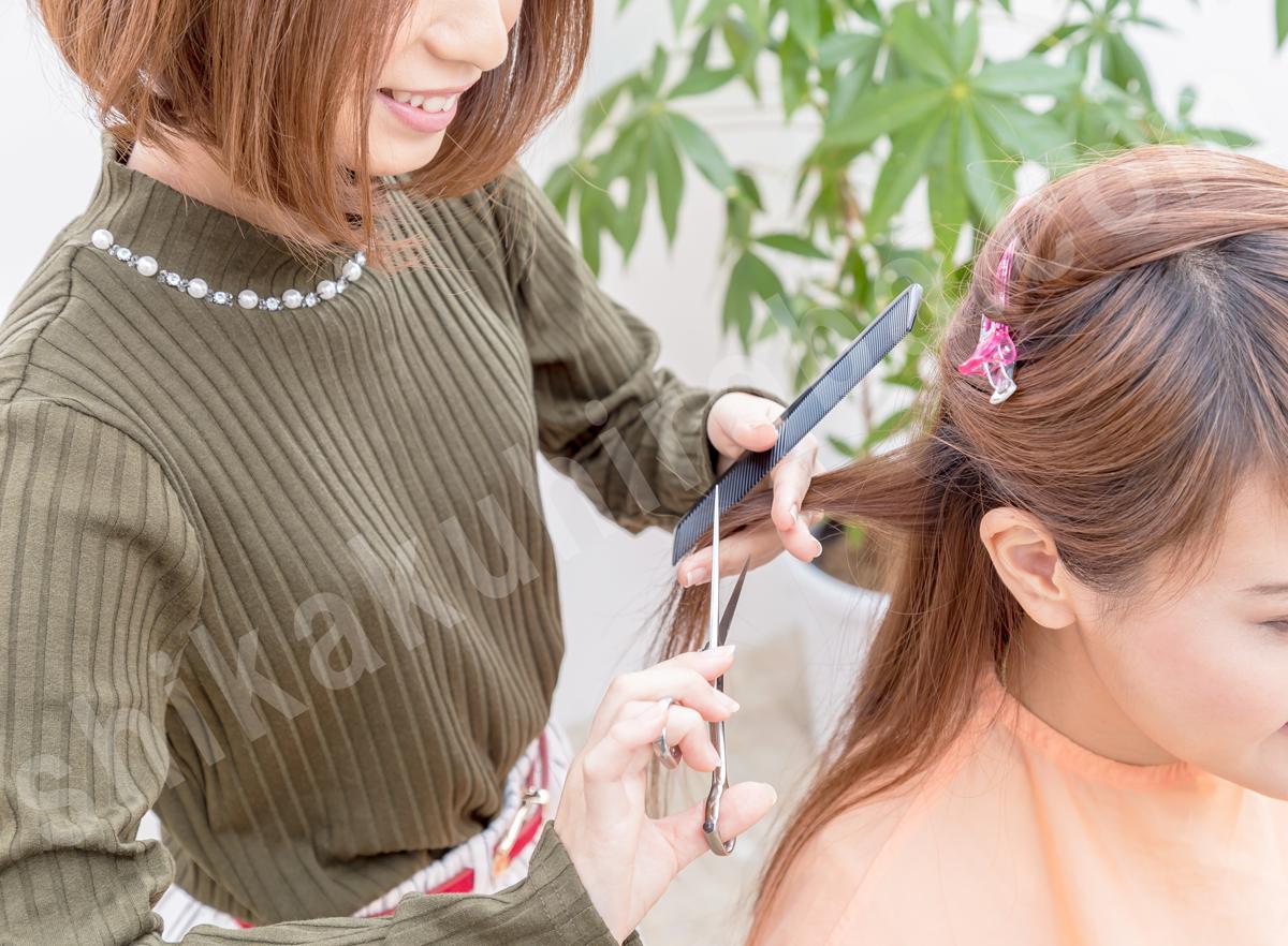 美容師 資格