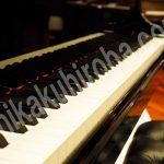 ピアノ 調律師 資格