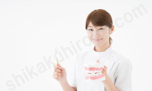 shikaku-shikaeisei2