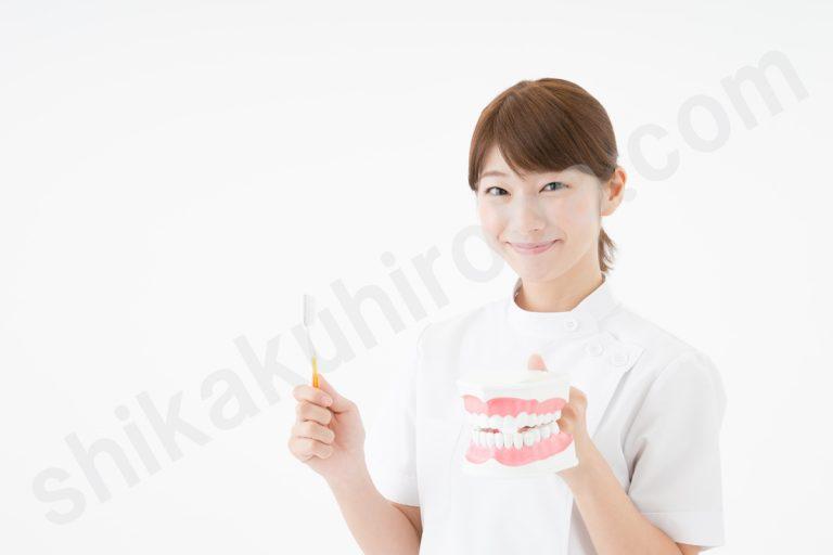歯科衛生士の資格詳細