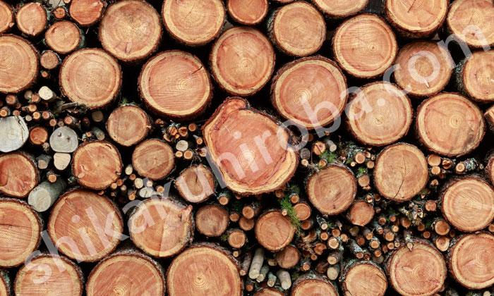 木材加工用機械作業主任者