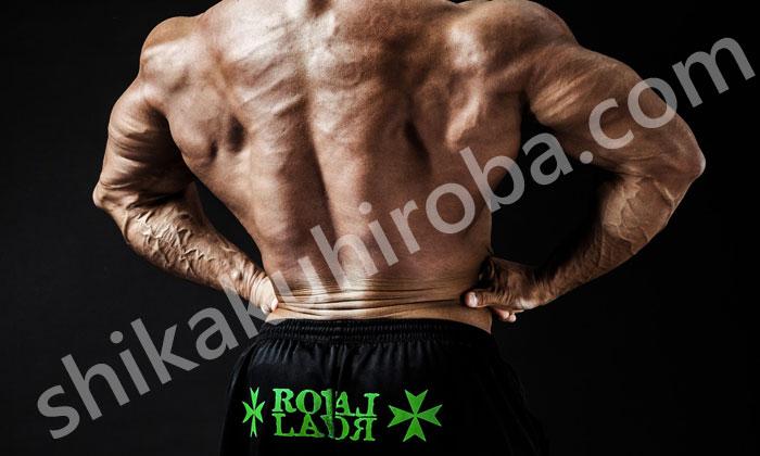プロボクサー