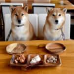 2匹の柴犬