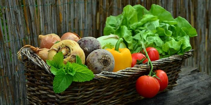 かご一杯の野菜