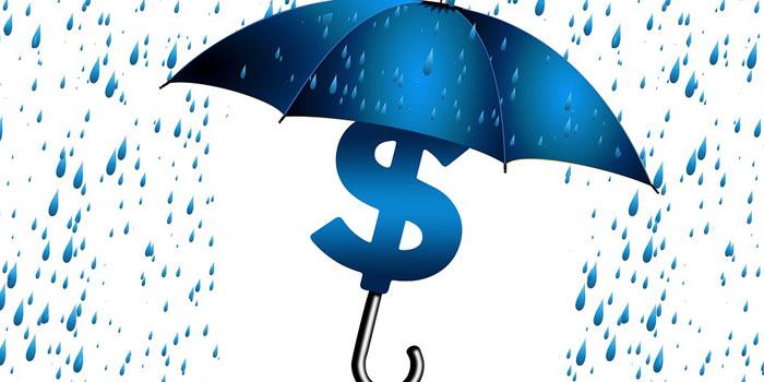 保険外交官の収入