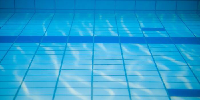 水泳コーチのやりがい