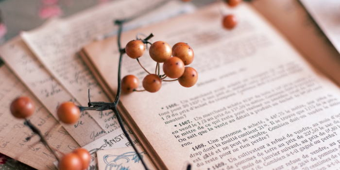 薬膳マイスターになるための独学の勉強方法