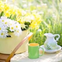 コーヒー 紅茶