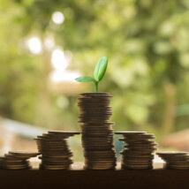 年収300万円の生活レベルは?月収や手取り、税金について調査